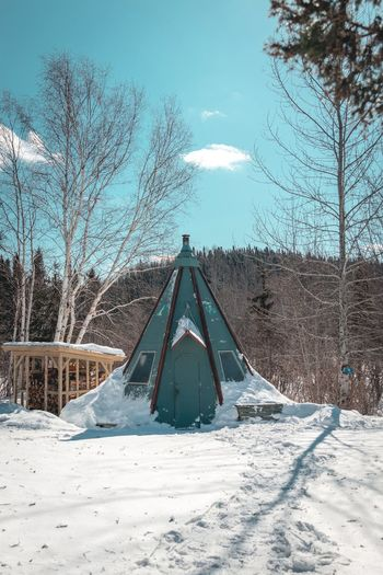 teepee goals! Winter Wonderland Tree Snow Mountain Cold Temperature Winter Snowcapped Mountain Sky Landscape Triangle Shape Deep Snow Pyramid Shape Pyramid Pine Woodland Frozen Snowing Extreme Weather Snowfall Weather Frost Pine Tree Spruce Tree