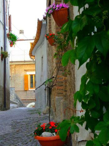 Taking Photos Farindola Abruzzo - Italy Ancient Architecture Beautiful Town