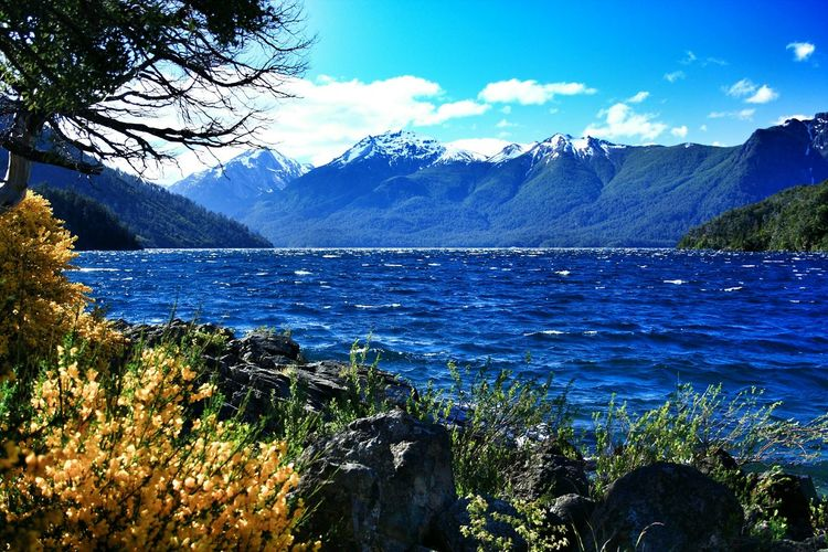 Bahía Lopez. Circuito Chico, Bariloche, Patagonia Argentina. Unykaphoto Bahia Lopez Circuito Chico Bariloche Bariloche Citytour Rio Negro Patagonia Argentina The Great Outdoors - 2016 EyeEm Awards The Great Outdoors With Adobe