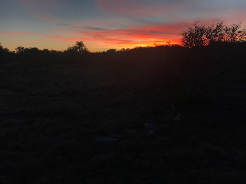 Iphonephotography Tinyshutter IPhoneography Hill Country Texas Sunrise Silhouette Nature Tree Scenics Tranquil Scene Tranquility Landscape No People Sky Outdoors Beauty In Nature