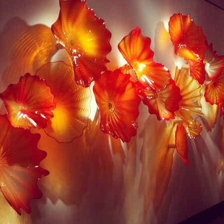 Glass art at The Chihuly Collection in St. Petersburg Chihuly Chihulygallery Chihulycollection Art artwork artgallery artlover glass glassart flowers stpetersburg stpetersburgflorida florida floridagirl vacation picoftheday bestoftheday instagood filters follow like likeforlike