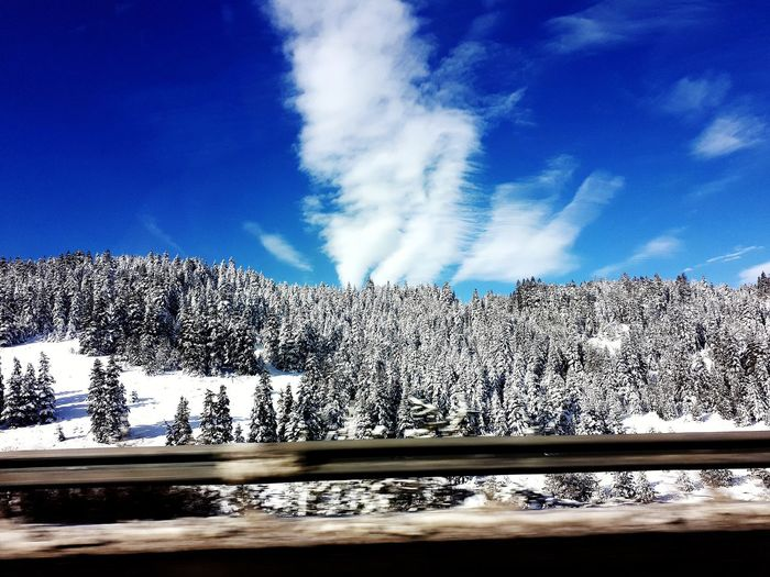 Snow ❄ Snowcapped Mountain Snowy Trees And Sky Sky Blue Cloud - Sky Motion Nature Outdoors No People Beauty In Nature