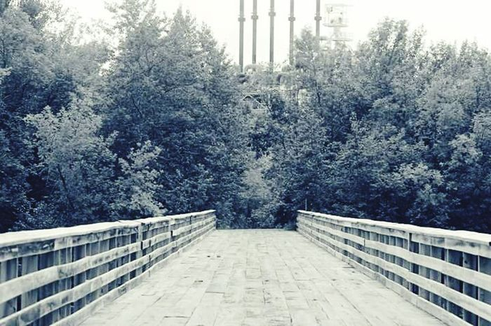 Nature On Your Doorstep Cloquet Black & White Bridge View Bridge Shades Of Grey