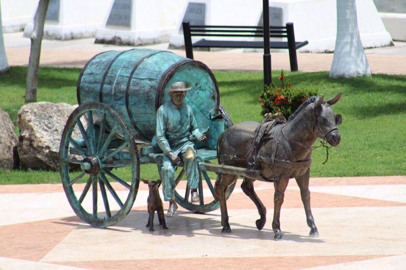 Aguador Carreta Vendedor Trabajador Campeche