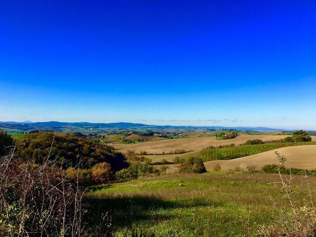 Landscape Nature Tuscany Taking Photos Picoftheday Landscape_photography Autumn Colors EyeEm Best Shots EyeEm Nature Lover Sunshine