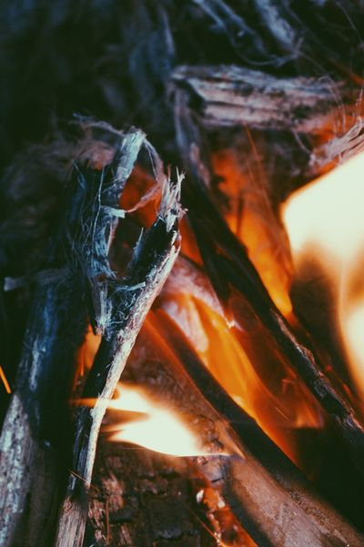 Flame Home Winter Mornings Fragility Flames & Fire Nature Beauty In Nature Close-up No People