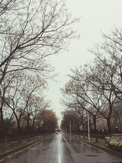 下雨了,回家路上