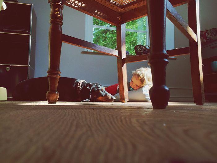 Girl looking at dog lying on floor
