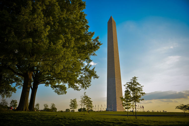 Architecture Beauty In Nature Day Field Growth Landscape Low Angle View Nature No People Outdoors Sky Travel Destinations Tree Washington DC Washington Memorial