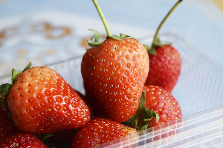 Close-up of strawberries in containers