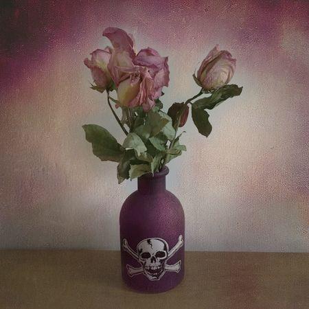 Deadflowers Eyeem