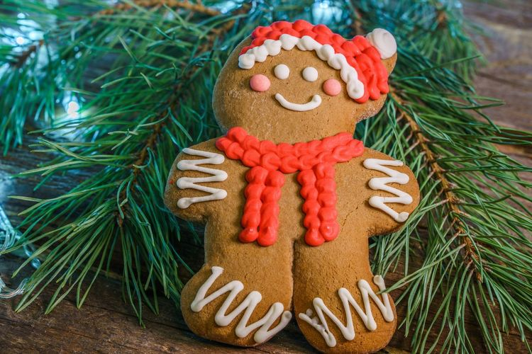 Close-up of christmas decorations on tree. ginger bread cookie