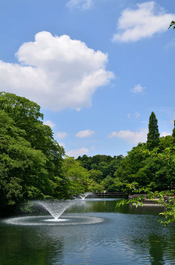 Inokashira Pond Beauty In Nature Blue Cloud Day Fountain Green Green Color Growth Idyllic Inokashira Park Landscape Lush Foliage Nature Outdoors Rippled Scenics Sky Tranquil Scene Tranquility Tree Water