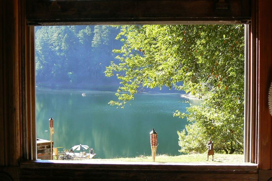 Lakeview through a Window Beauty In Nature California Dreaming Green Idyllic Looking Through Window Man Lakeside Nature Private Beach Scenics Tranquil Scene Tranquility Travel Destinations Tree Wedding Locations