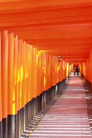People walking in torii gates on sunny day