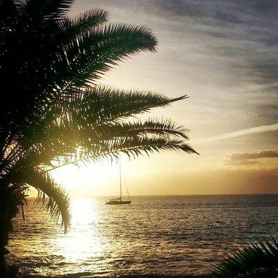 Hier lag sie 7 Tage lang, bei Tag und Nacht. Abends waren wir recht neidisch über den einsamen Platz an Deck der Yacht. Als wir am 8. Tag Ausschau hielten, war die Unbekannte verschwunden. Sonnenuntergang am Meer bei Arguineguin - Eine Nikontravelinspiration :)