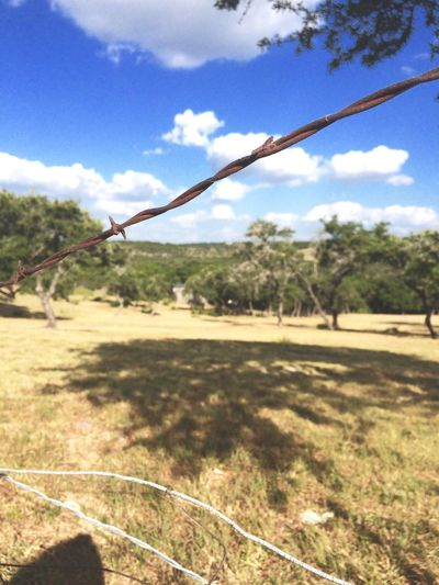 Barbed Wire Countryside Fence Texas