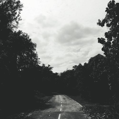 Road Abandon Road Blackandwhite Black And White Abandoned Places Tree Pixelated Sky Cloud - Sky Empty Road Road Marking