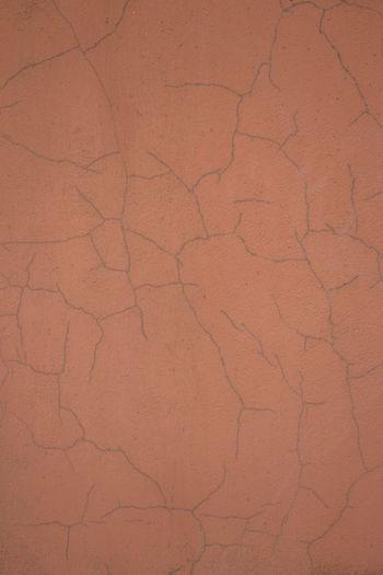 Cracked Full
