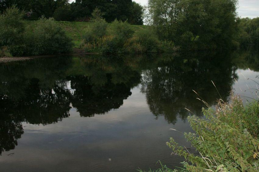 Reflection Reflection_collection Reflections River Collection Water_collection Water Reflections Streamzoofamily