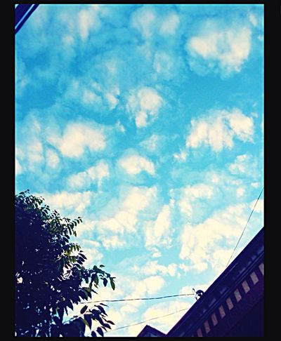 Blue sky ☁️