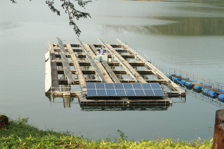Environment Fuel And Power Generation Mode Of Transportation Nature Plant Solar Energy Solar Energy Plant Water