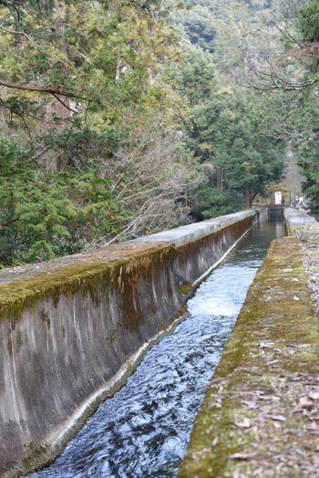 南禅寺 水路閣 水道橋 今も綺麗な水が流れています