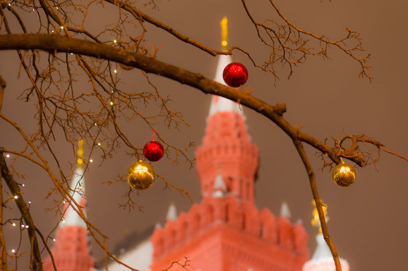 Shiny baubles hanging from bare tree against church at dusk