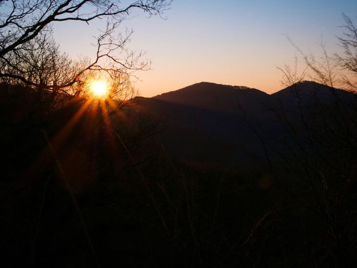 Good Morning Mountains Sunrise Nature Silhouette Sun Tranquil Scene Beauty In Nature Scenics Sunlight Tree Tranquility Sky Outdoors No People Branch Mountain