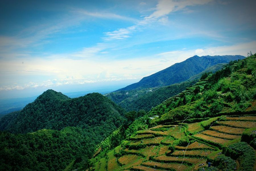 Landscape Mountain Nature Cultivated Land Beauty Sky ScenicsCloud Beauty In Nature Cloud - Sky Mountain Range Tree Plant Terraced Field Outdoors Clou