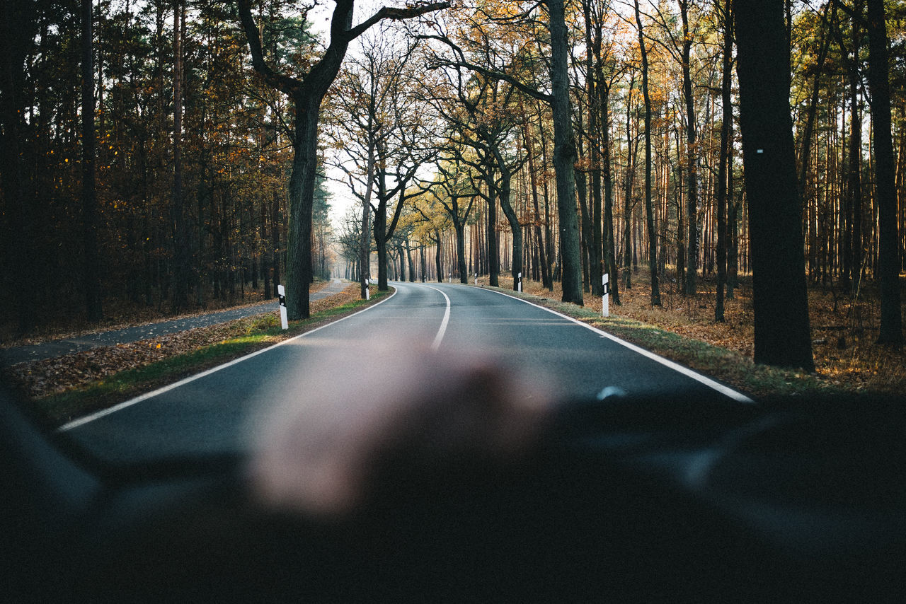 Road Amidst Trees Seen Through Car Windshield