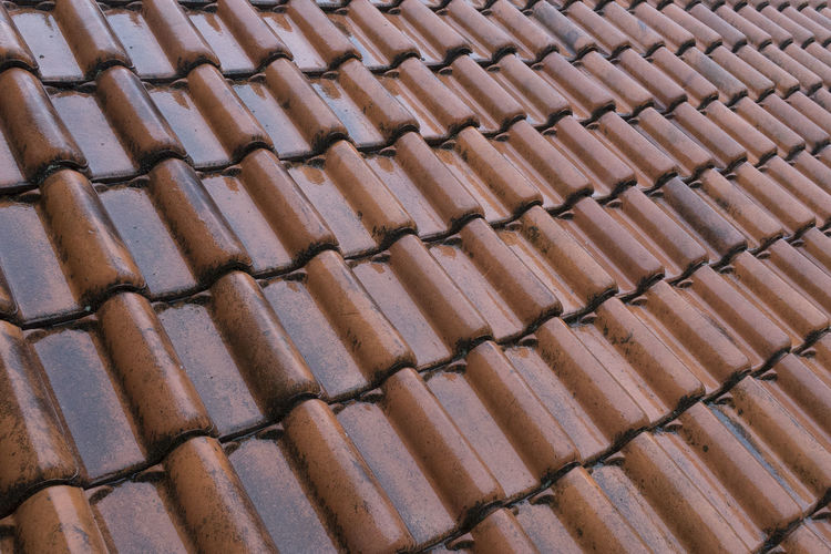 Wet orange roof tiles on the roof of a house Building Roof Rooftop Rain Roof Tiles Outdoors House Wet Home Exterior