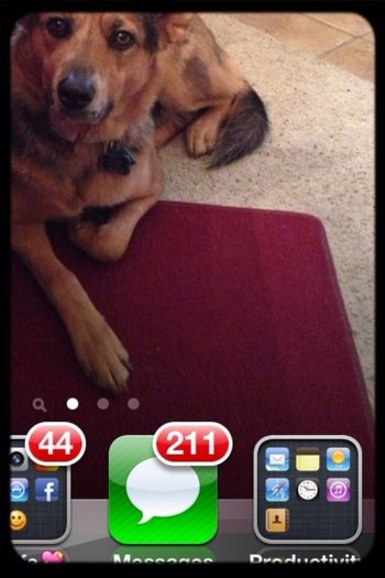 Look at all those messages!