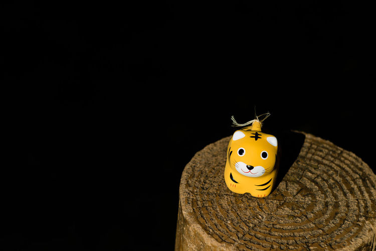This cute little tiger is actually a fertility charm from a Shinto shrine in Japan. Black Background EyeEmNewHere Animal Themes Animals In The Wild Black Background Charm Charming Close-up Copy Space Cute Day Insect Ladybug Model No People One Animal Small Studio Shot Tiger Toy Yellow