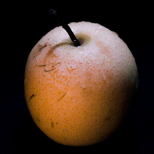 Close-up of wet apple against black background