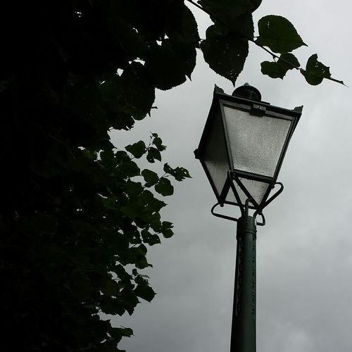 Lantern Silhouette Poetryinphotography Poetry Streetphotography Streetlight Streetlamp Old Oldstyle Nofilter