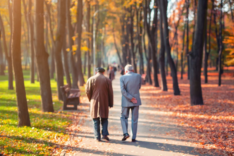 Rear view of couple walking on street during autumn