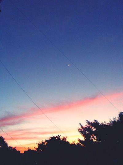 #sunset #sun