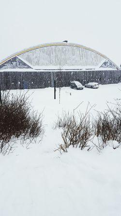 It's Cold Outside Winterinnorway Norway January winterwonderland Wintertime