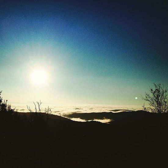 Sublime mer de nuages ce matin sur la route du boulot Nuages Clouds Valleerhone Ardeche Ardechepleincoeur Centreardeche Rhonealpes Igersrhonealpes Igersardeche Igers_ardeche Ig_ardeche Magnifiquefrance Jaimelafrance Beautifulfrance Landscape Nature Natureshot  Naturaleza Skyporn