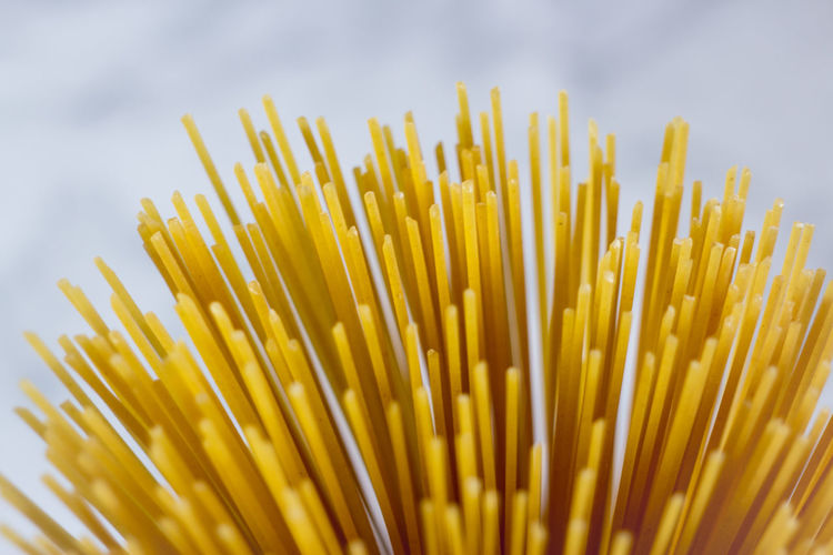 Close-up of fresh yellow against white background