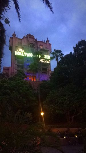 DisneyWorld Disney Hollywood Studios Happiestplaceonearth Travel Destinations Vacations Illuminated Low Angle View Hollywood Tower Hotel