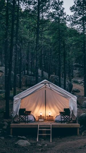View of luxury tent in forest at night