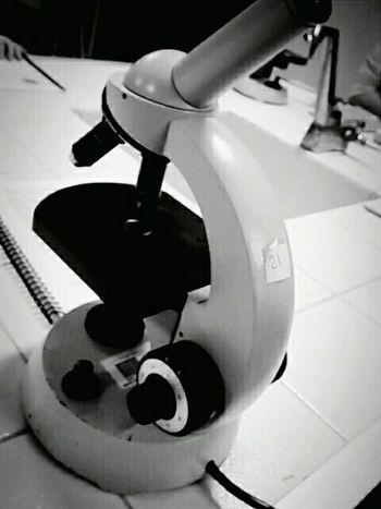 Laboratory Biology🔬