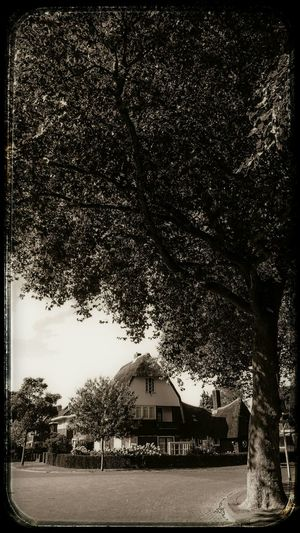 Village View in Hoogezand. Light And Shadow in Monochrome Vintage Sepia.