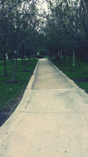 I love overcast days for some reason... Fall can't come soon enough! Chilly Walkway Tree Lined