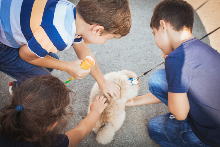 High angle view of siblings playing with dog on footpath