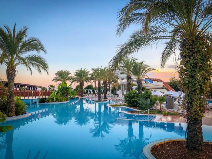 Palm Tree Tropical Climate Tree Water Swimming Pool Pool Plant Tourist Resort Nature Reflection Travel Destinations Poolside Architecture Sky Trip Day Vacations Luxury Built Structure No People Outdoors