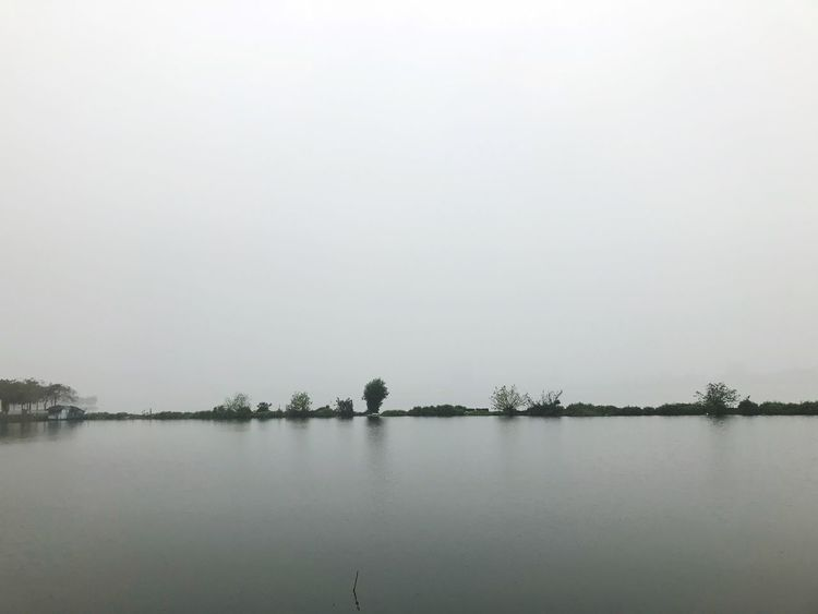 foggy day EyeEmNewHere Lonelyness Foggy Lake Nature Tranquility Water Tranquil Scene Beauty In Nature Lake