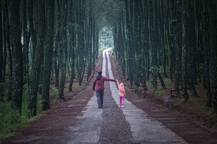 Father and daughter walking while holding hands Daughter Diminishing Perspective Father Father And Daughter Footpath Forest Forestwalk Full Length Growth Happiness Holding Hands Leisure Activity Lifestyles Person Pine Tree Rear View Relationship Standing The Way Forward Togetherness Tree Umbrella Vanishing Point Walk Walking